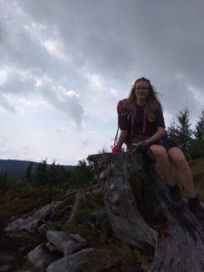 Šumava - kamzík