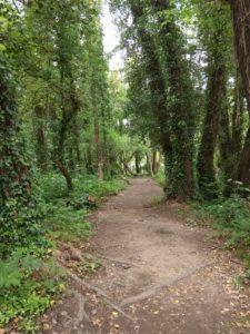 Cesta do Pontevedry